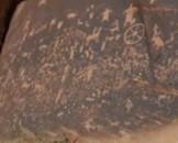 Navajo Petroglyphs